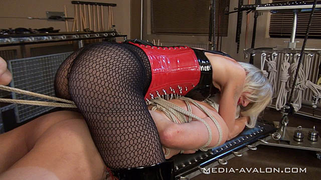 Bound to please - Teil 3