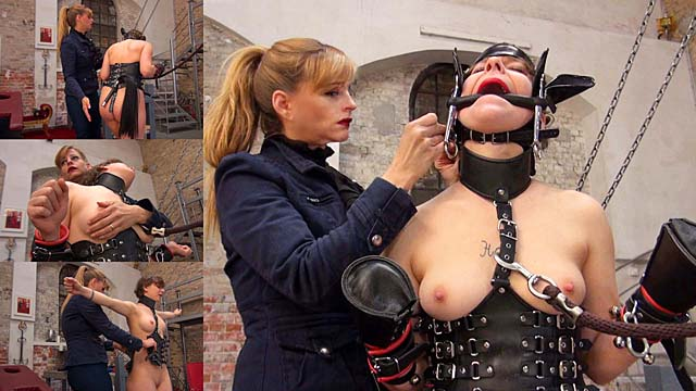 Lady Grace - Ponygirl 1