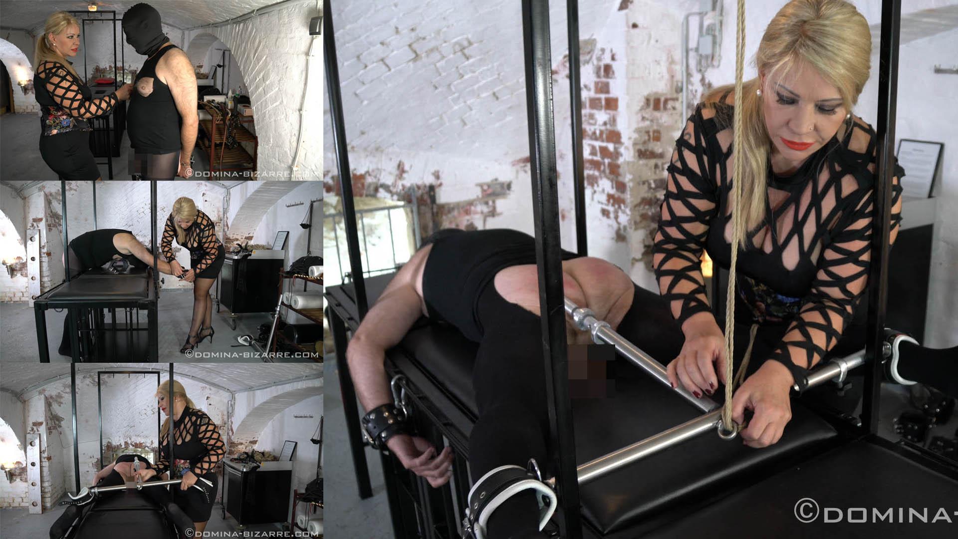 Drill in der Residenz - Teil 5